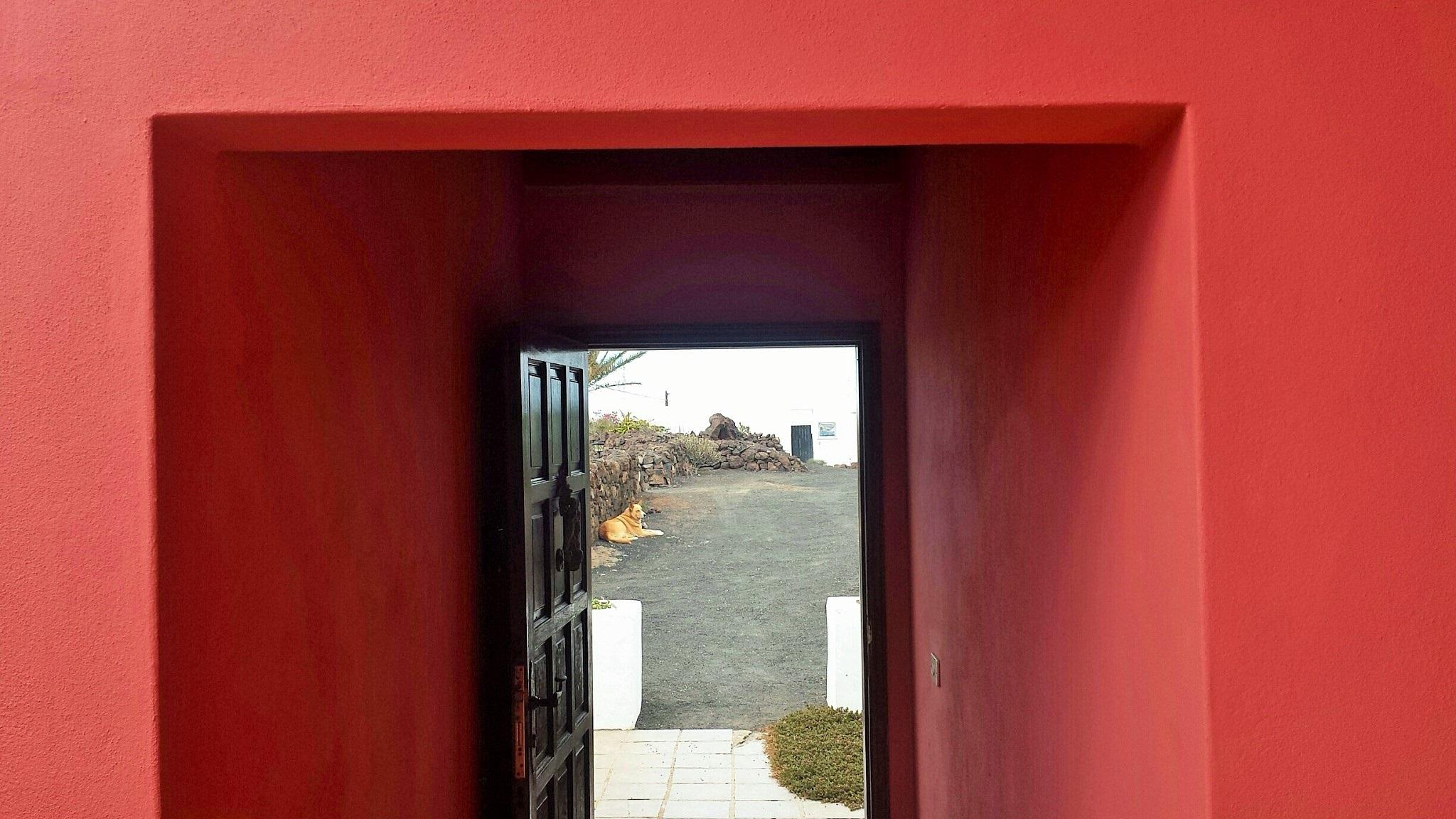 La puerta abierta