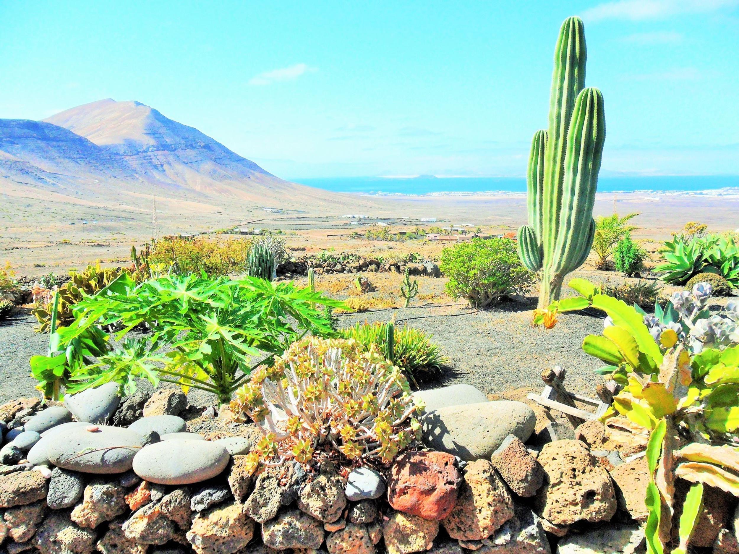 Panorámica desde la Casa Rural Los Ajaches