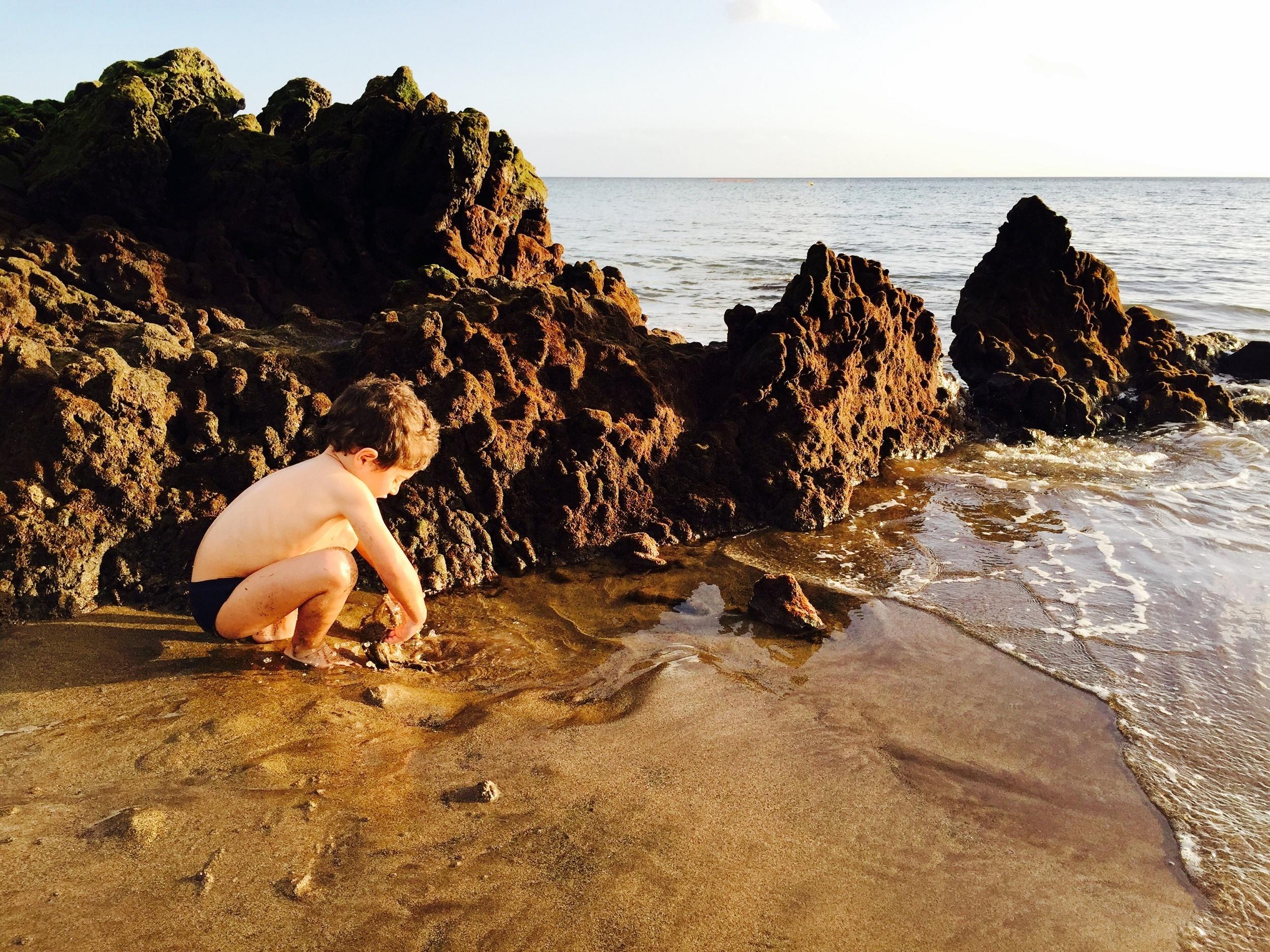 Nico buscando cangrejos